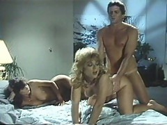 Ultimate Lover Part 3 Nina Hartley Tracey Adams