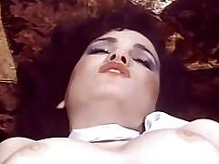 Swedish Erotica Hard 22 Seka & Desiree Sex 101 (1993)