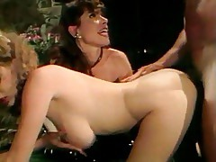 Mindy Rae, Janey Robbins, Tamara Longley, Peter North.