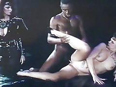 Teresa Orlowski Domina